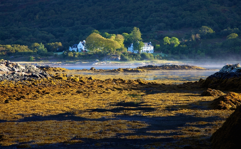 KINLOCH LODGE -MORNING MIST 2