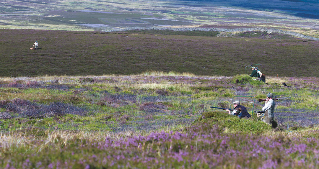 10 of Britain's best grouse moors