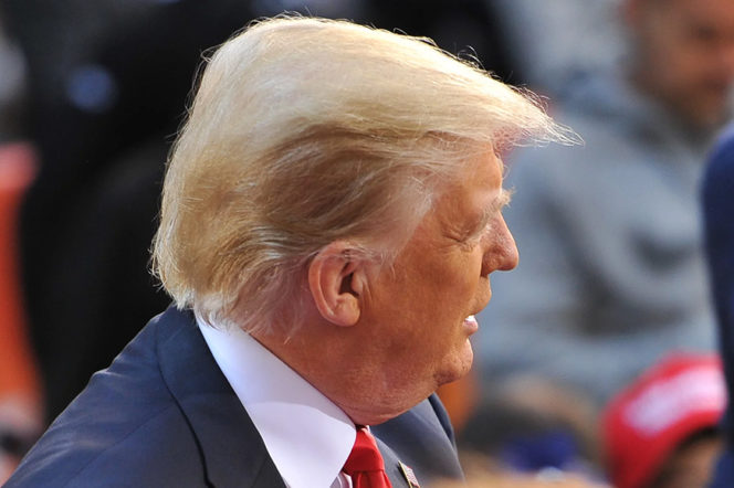 Hideous or handsome? Dissecting Donald Trump's hairstyle
