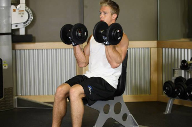 Build a beach body with Matt Roberts: Week 6 – Arms
