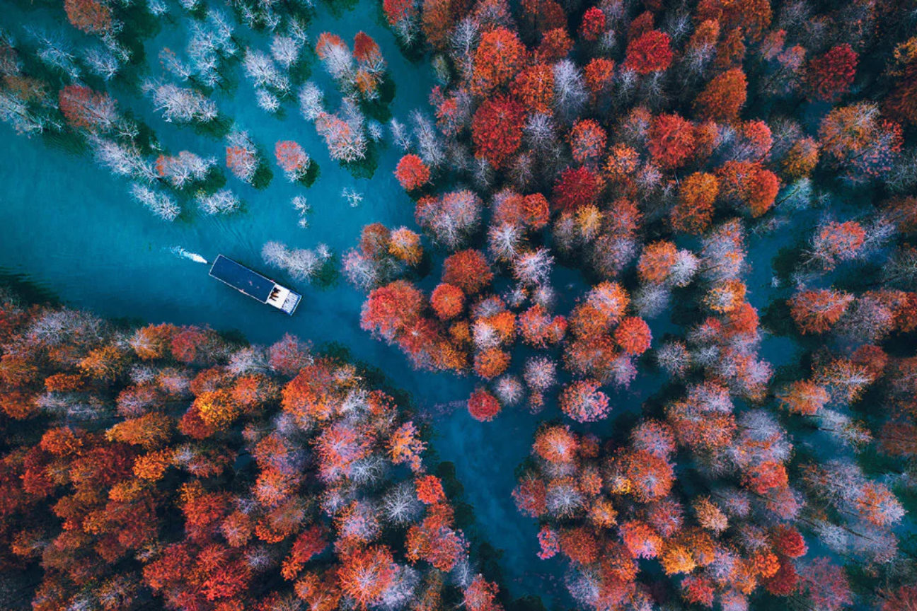 The most amazing drone photos you'll see all year