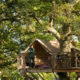 5 luxury treehouses and cabins for a romantic weekend away