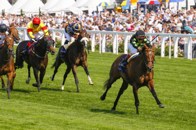What to expect from Ascot this week, by racing presenter Oli Bell