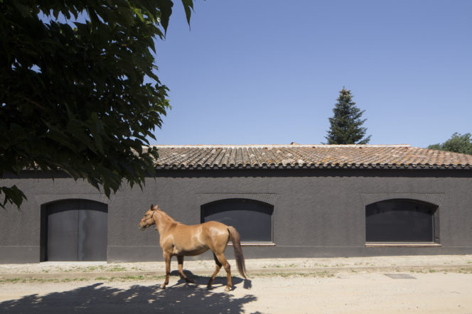 Strong meets stables in the Sant Martí House