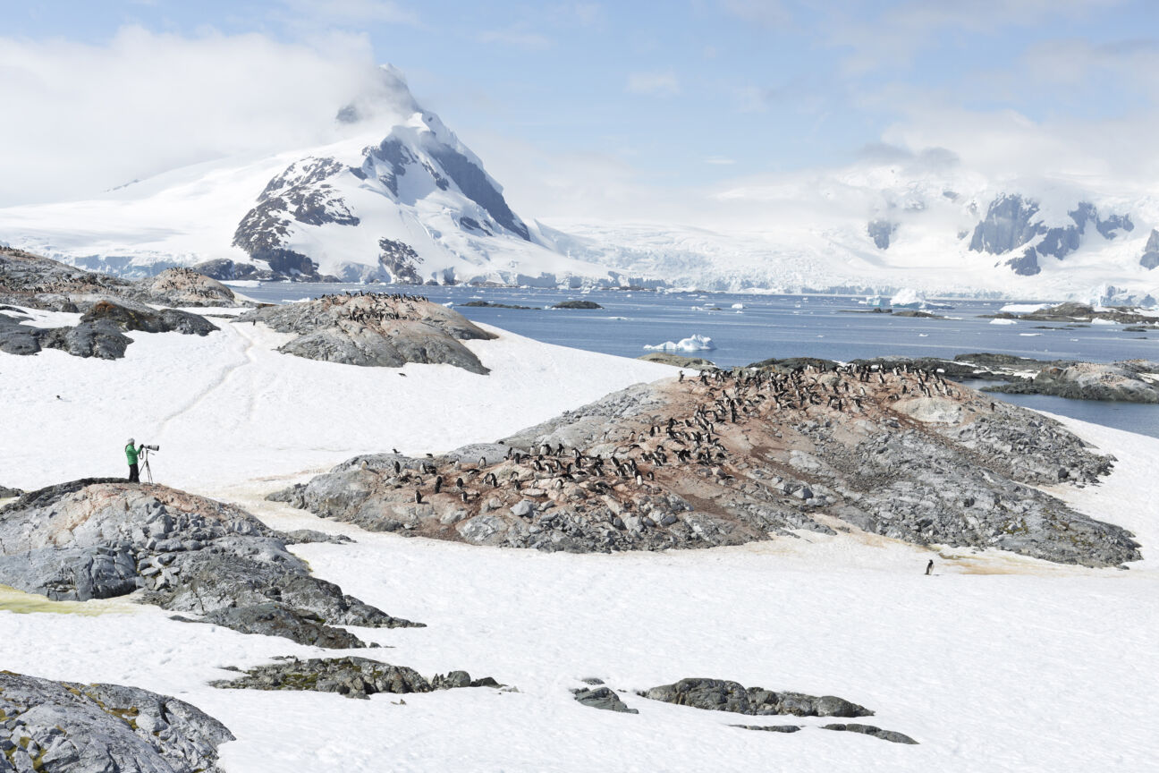 How Antarctica became the hottest destination in luxury travel