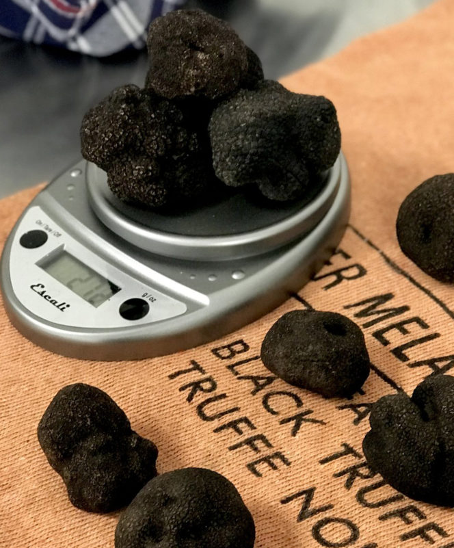 Close Shaves: The dark, delicious world of the international truffle trade