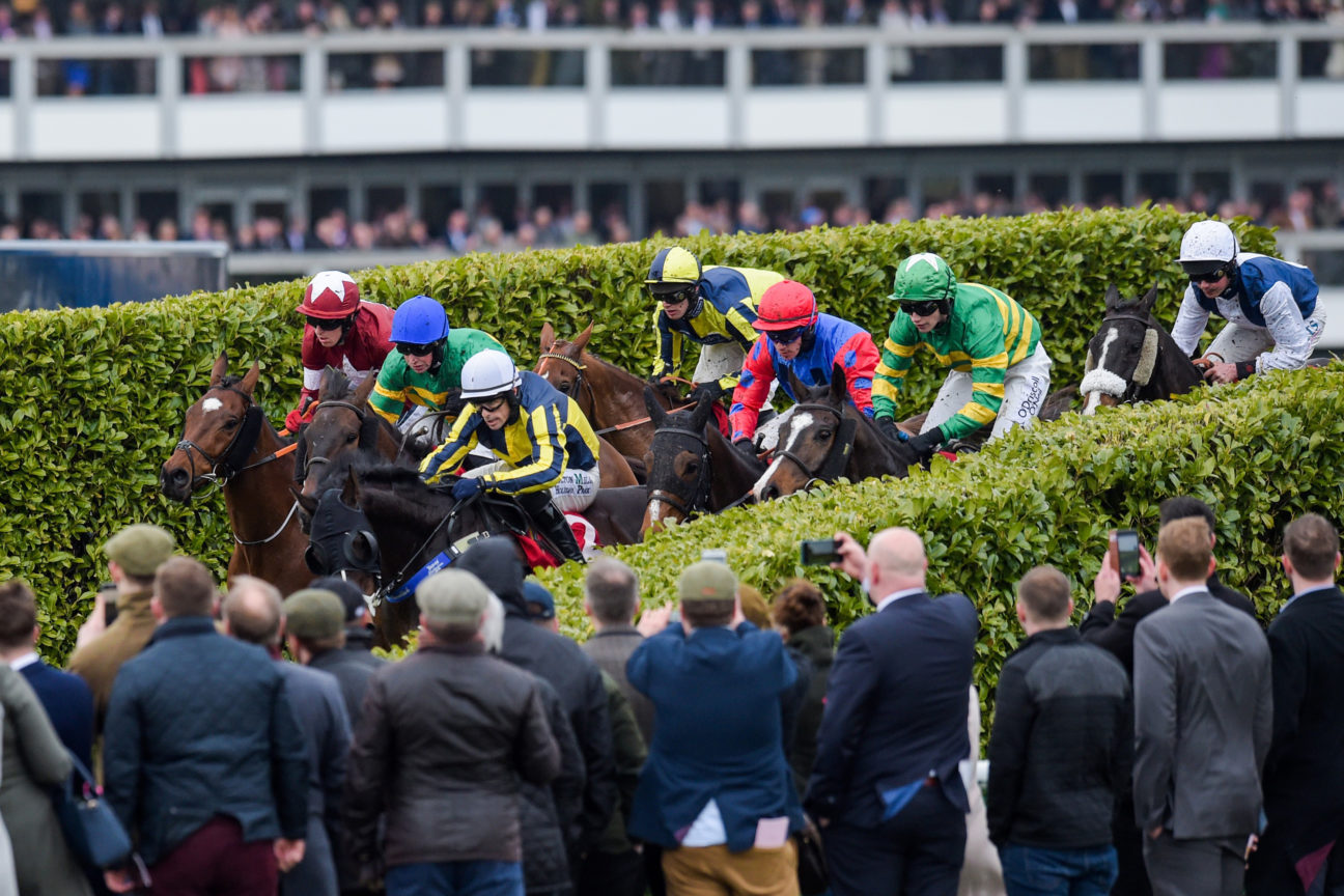 This top bookmaker's tips will help you win big at the races