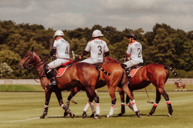 polo-players-shoot-horses