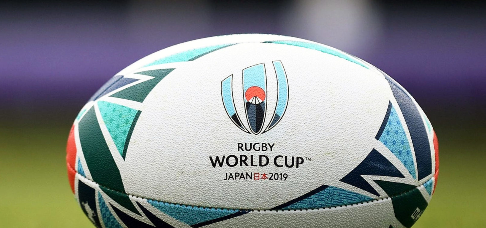 rugby world cup guide