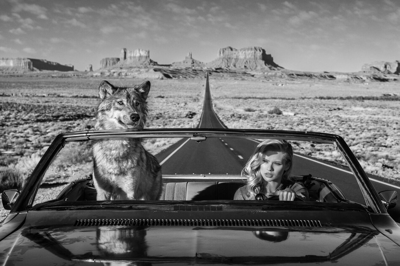 david yarrow photographs