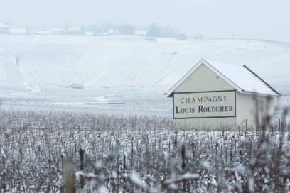 louis roederer champagnes christmas
