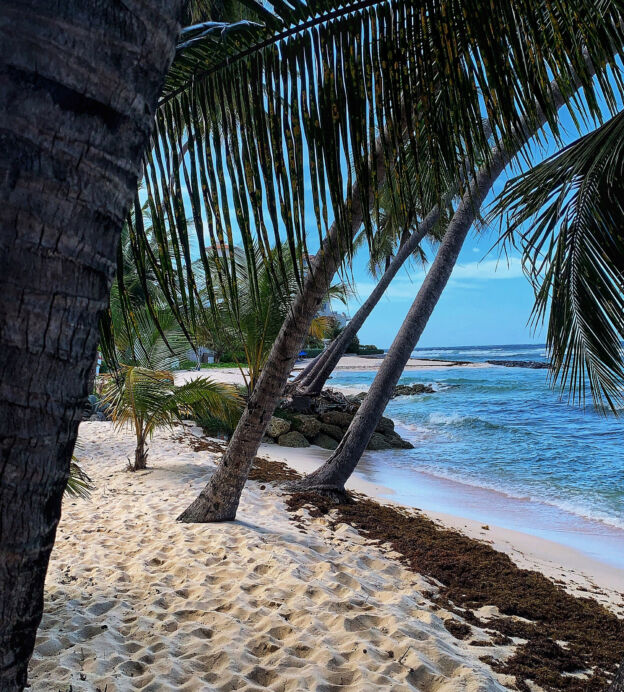 best safe travel destinations winter sun barbados