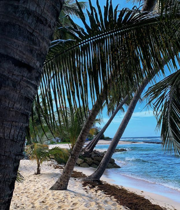 best destinations december travel guide safe holiday vacation st lucia
