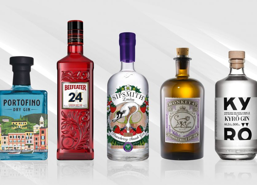 21 of the best gins to drink in 2021